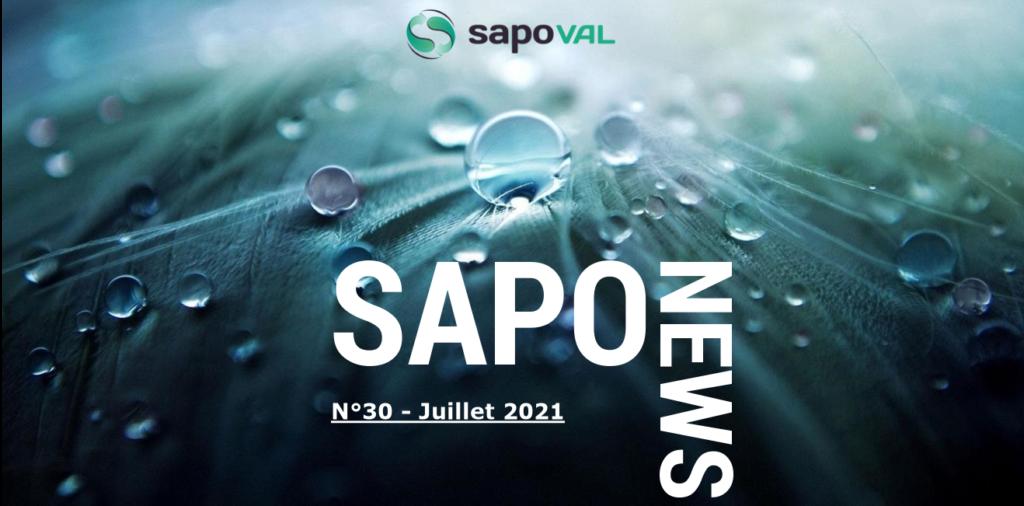 Image entête Sapo'news 30